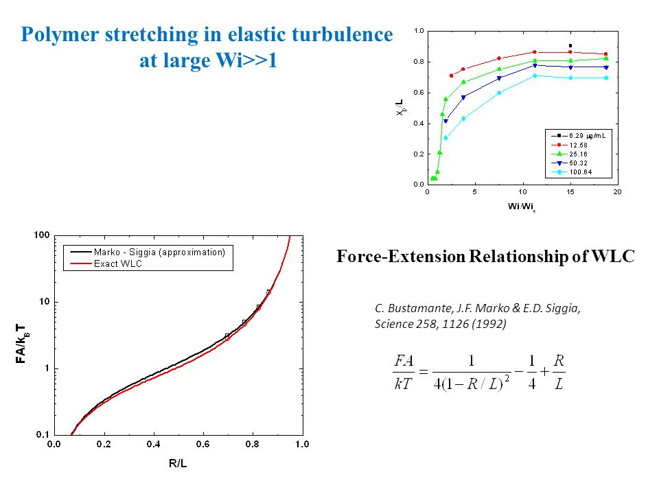 Force-Extension Relationship of WLC C. Bustamante, J.F.