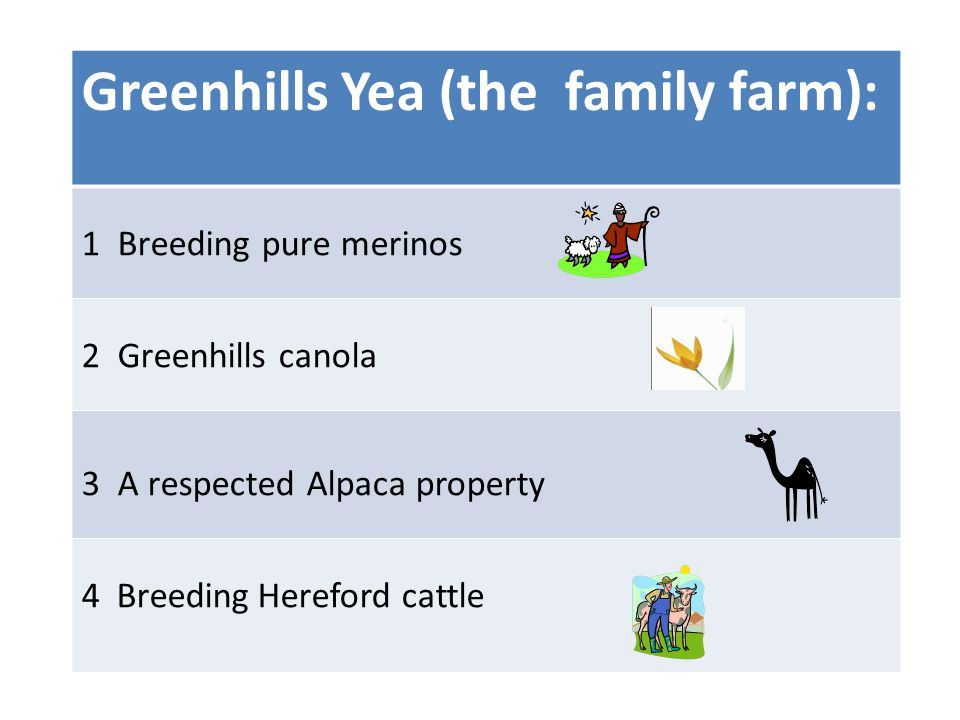 Greenhills Yea (the family farm): 1 Breeding pure merinos 2Greenhills canola 3A respected Alpaca property 4 Breeding Hereford cattle