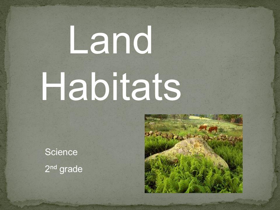 Land Habitats Science 2 nd grade