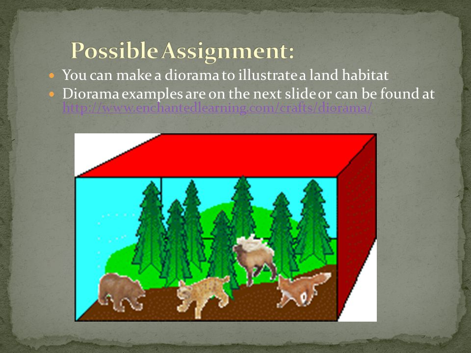 You can make a diorama to illustrate a land habitat Diorama examples are on the next slide or can be found at http://www.enchantedlearning.com/crafts/