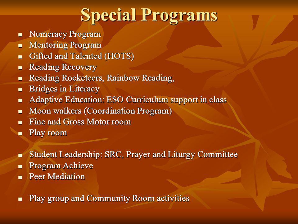 Special Programs Numeracy Program Numeracy Program Mentoring Program Mentoring Program Gifted and Talented (HOTS) Gifted and Talented (HOTS) Reading R