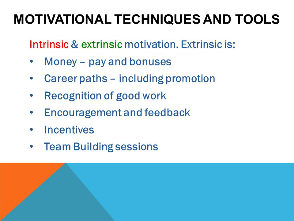 MOTIVATIONAL TECHNIQUES AND TOOLS Intrinsic & extrinsic motivation. Extrinsic is: Money – pay and bonuses Career paths – including promotion Recogniti