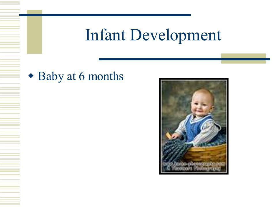 Infant Development  Baby at 6 months