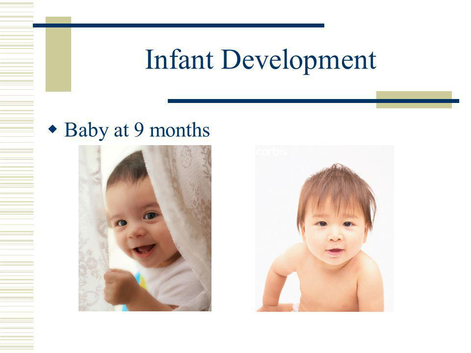 Infant Development  Baby at 9 months