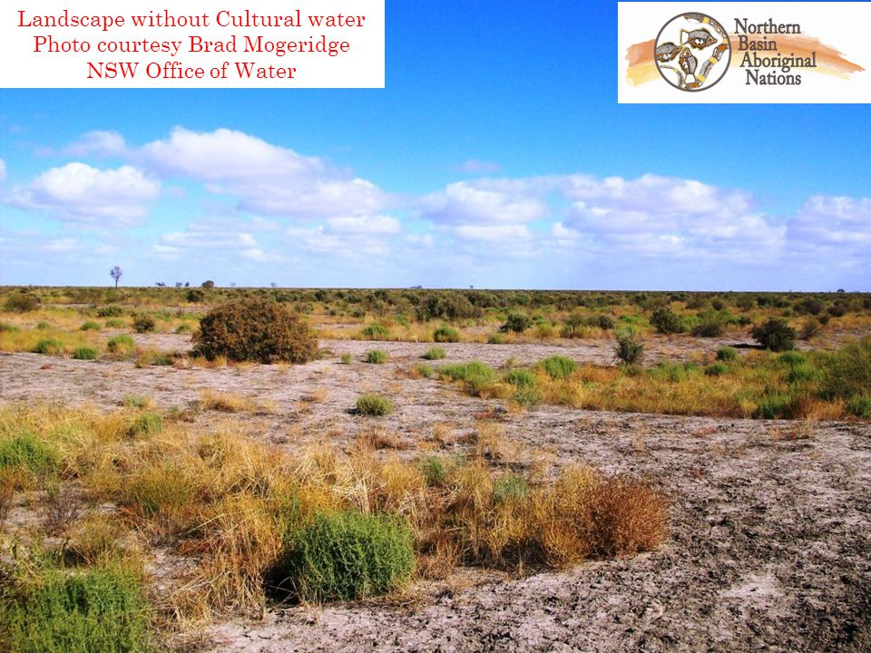 Landscape without Cultural water Photo courtesy Brad Mogeridge NSW Office of Water