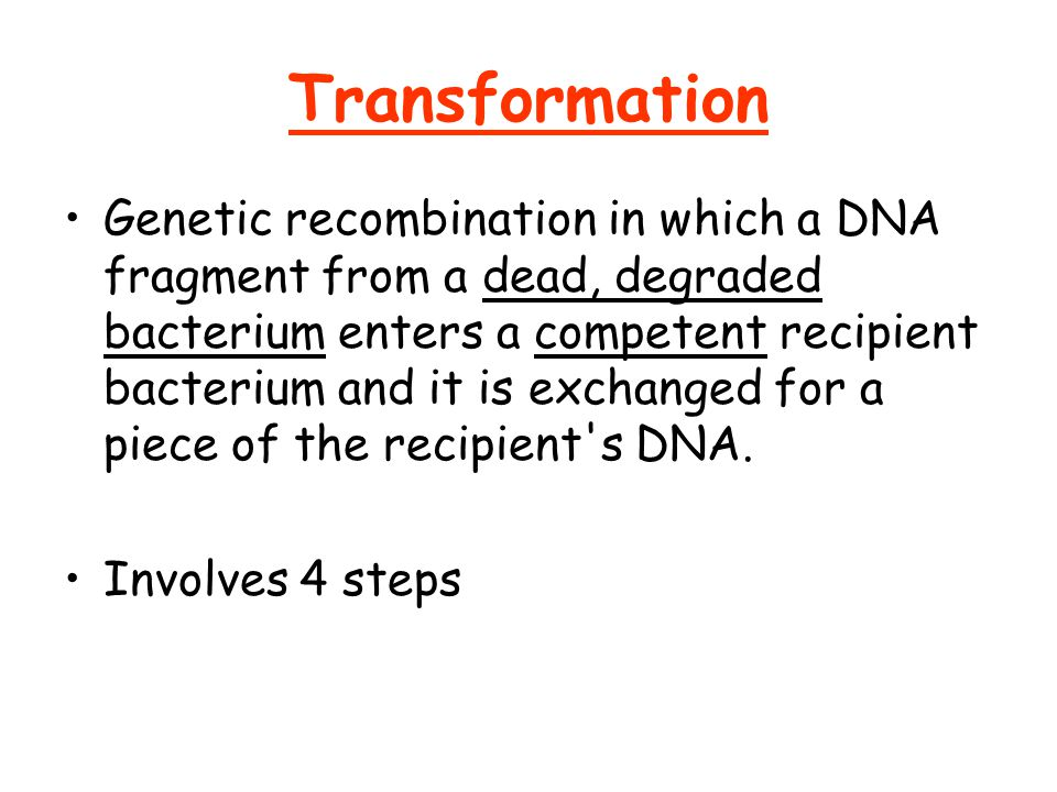 Transformation Genetic recombination in which a DNA fragment from a dead, degraded bacterium enters a competent recipient bacterium and it is exchanged for a piece of the recipient s DNA.