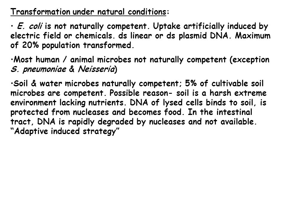 Transformation under natural conditions: E. coli is not naturally competent.