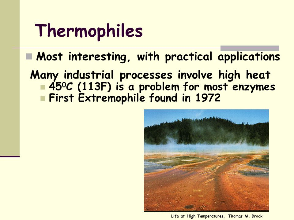 Extremophiles got there first Nature has already given us the solutions to these problems Extremophiles have the enzymes that work in extreme conditio