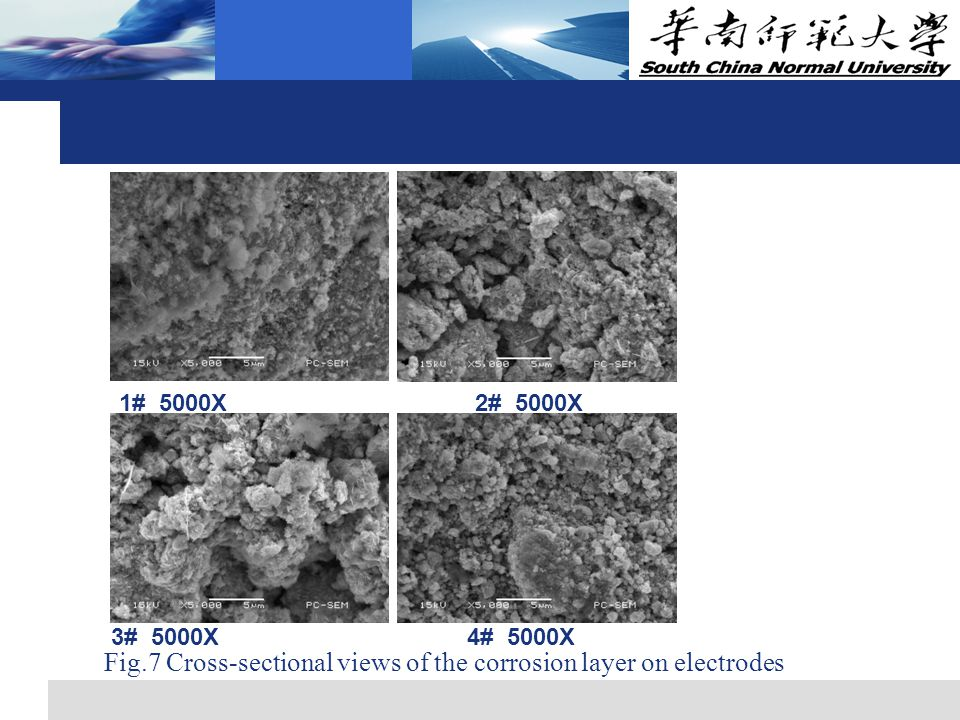 1# 5000X 2# 5000X 3# 5000X 4# 5000X Fig.7 Cross-sectional views of the corrosion layer on electrodes