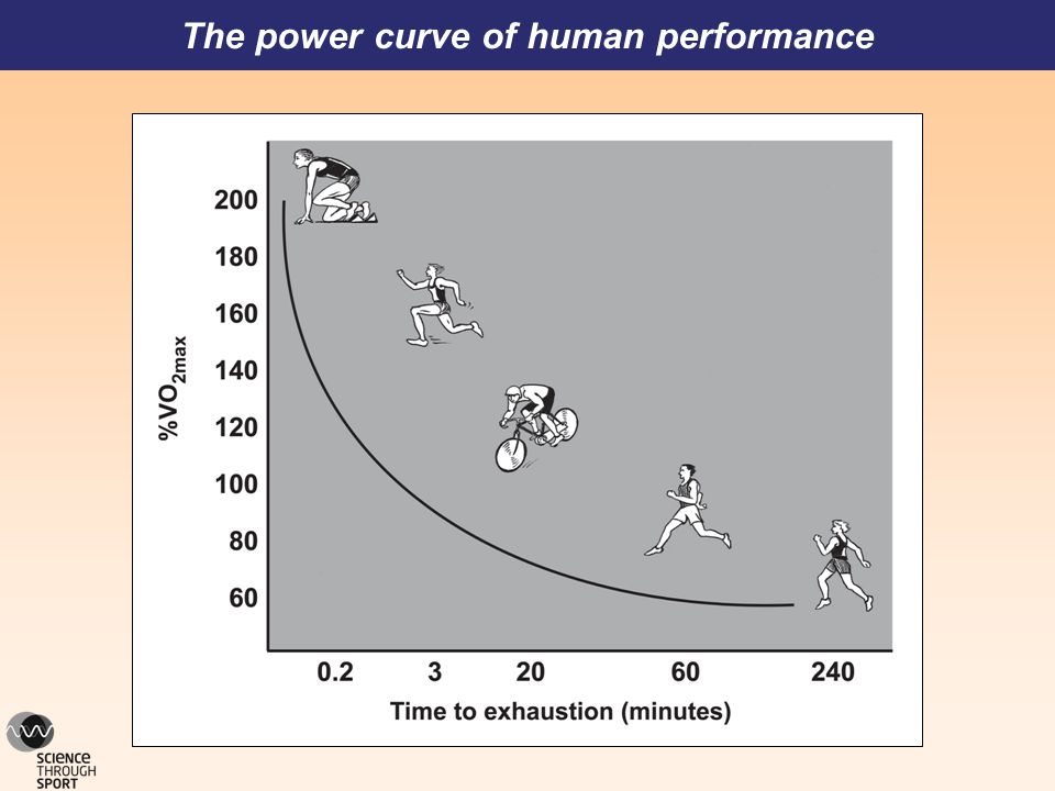 The power curve of human performance