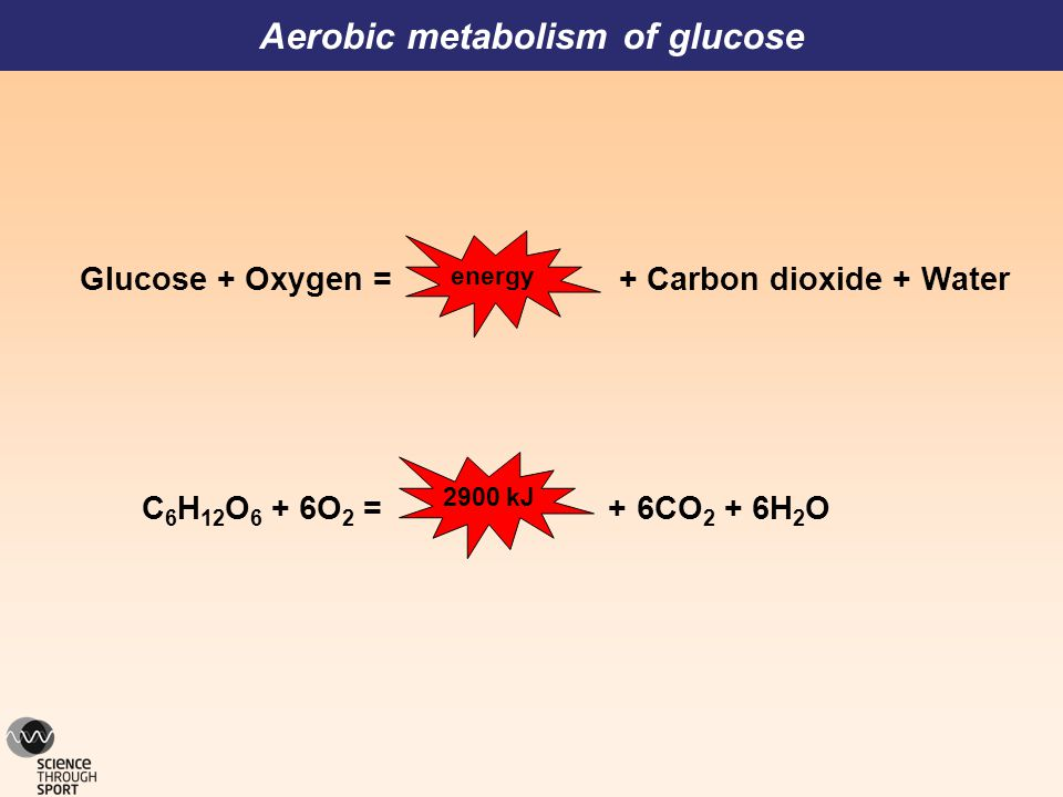 Aerobic metabolism of glucose Glucose + Oxygen = + Carbon dioxide + Water energy C 6 H 12 O 6 + 6O 2 = + 6CO 2 + 6H 2 O 2900 kJ