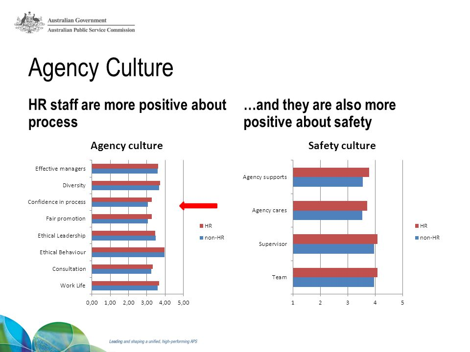 Agency Culture HR staff are more positive about process …and they are also more positive about safety