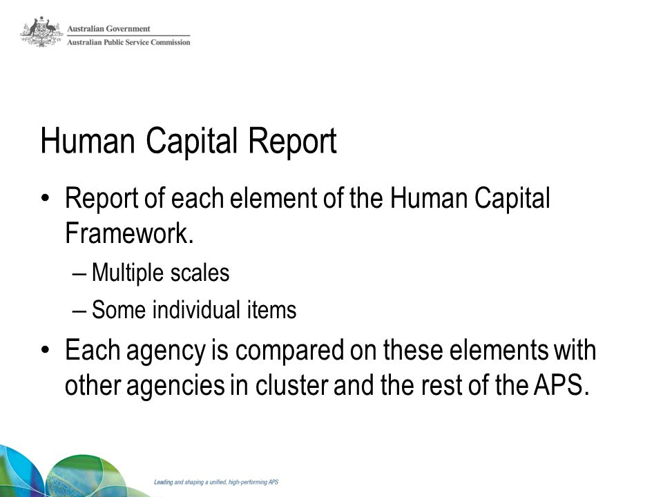 Human Capital Report Report of each element of the Human Capital Framework.