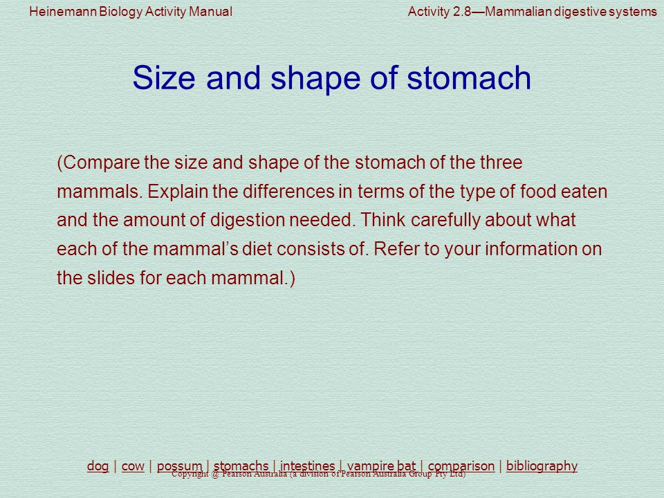 Heinemann Biology Activity Manual Activity 2.8—Mammalian digestive systems Copyright @ Pearson Australia (a division of Pearson Australia Group Pty Ltd) Length of small intestine (Compare the relative length of the small intestine in the three mammals and attempt to relate differences in length to differences in diet.