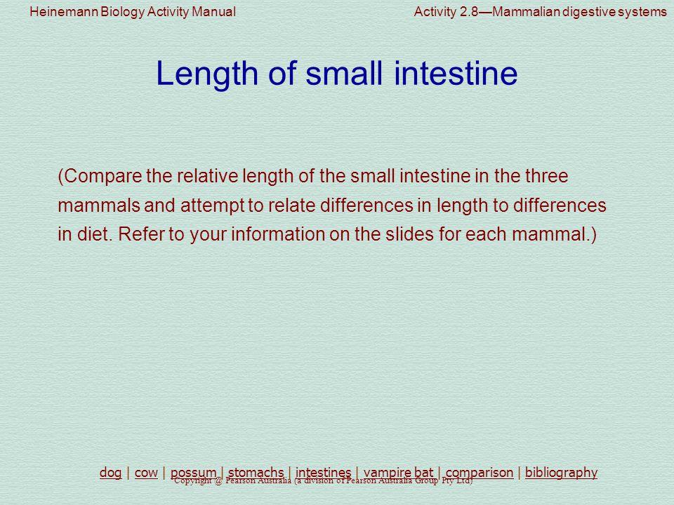 Heinemann Biology Activity Manual Activity 2.8—Mammalian digestive systems Copyright @ Pearson Australia (a division of Pearson Australia Group Pty Ltd) Vampire bat Type of food eaten...