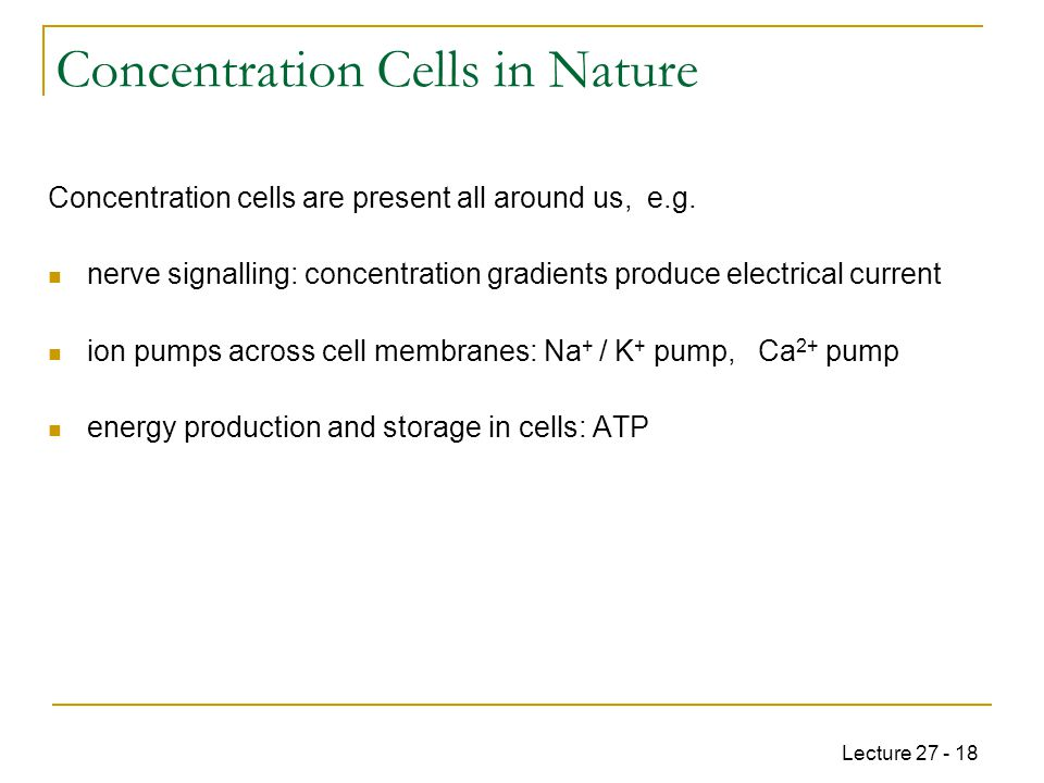 Lecture 27 - 18 Concentration Cells in Nature Concentration cells are present all around us, e.g.