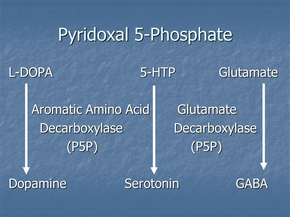 Pyridoxal 5-Phosphate L-DOPA 5-HTP Glutamate Aromatic Amino Acid Glutamate Aromatic Amino Acid Glutamate Decarboxylase Decarboxylase Decarboxylase Decarboxylase (P5P) (P5P) DopamineSerotonin GABA