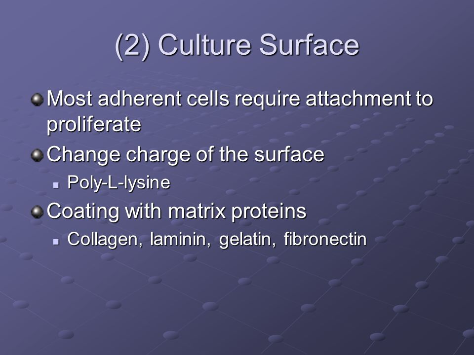 (2) Culture Surface Most adherent cells require attachment to proliferate Change charge of the surface Poly-L-lysine Poly-L-lysine Coating with matrix proteins Collagen, laminin, gelatin, fibronectin Collagen, laminin, gelatin, fibronectin