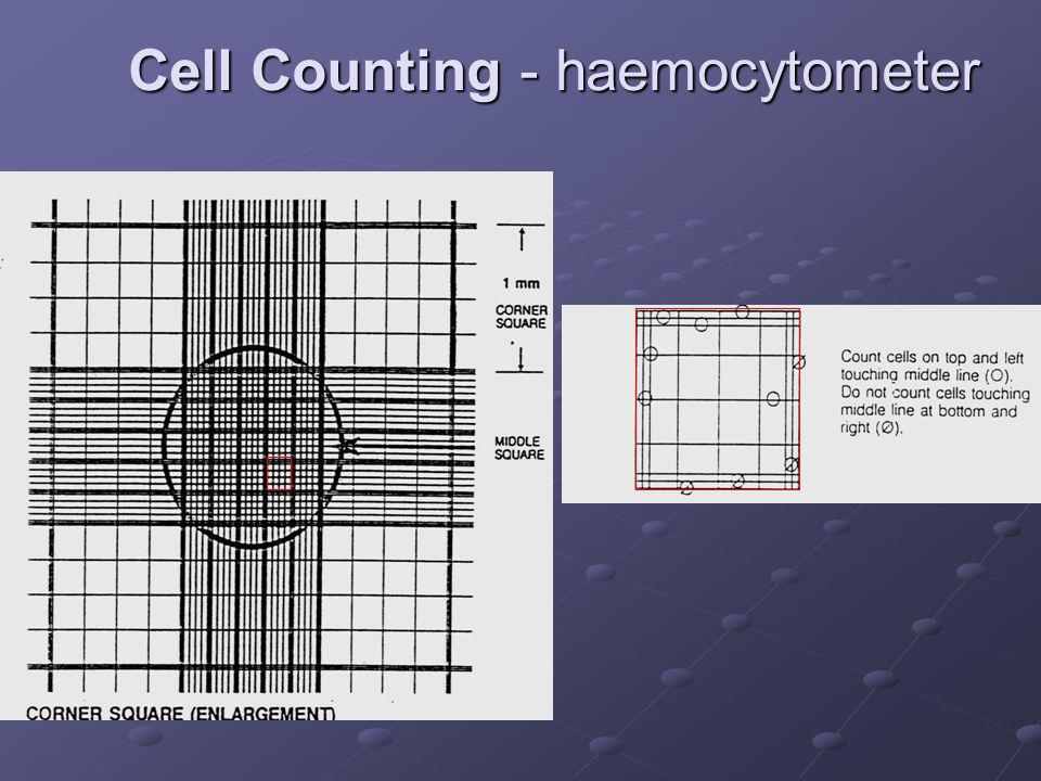 Cell Counting - haemocytometer
