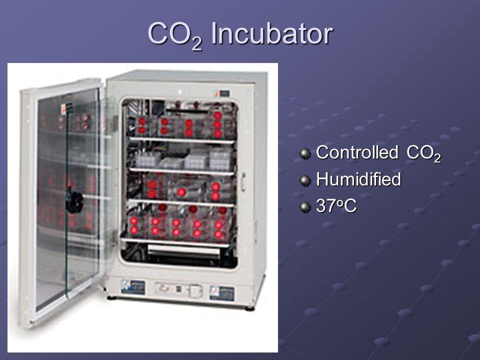 CO 2 Incubator Controlled CO 2 Humidified 37 o C