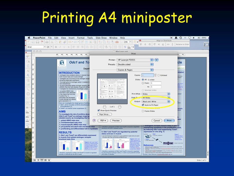Printing A4 miniposter