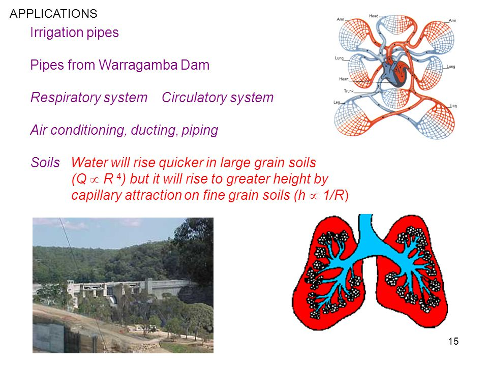 15 Irrigation pipes Pipes from Warragamba Dam Respiratory system Circulatory system Air conditioning, ducting, piping Soils Water will rise quicker in
