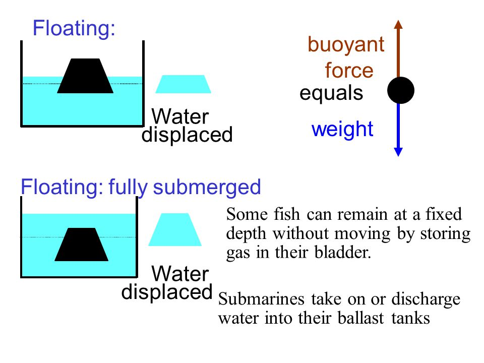 weight buoyant force Floating: Floating: fully submerged Water displaced Some fish can remain at a fixed depth without moving by storing gas in their