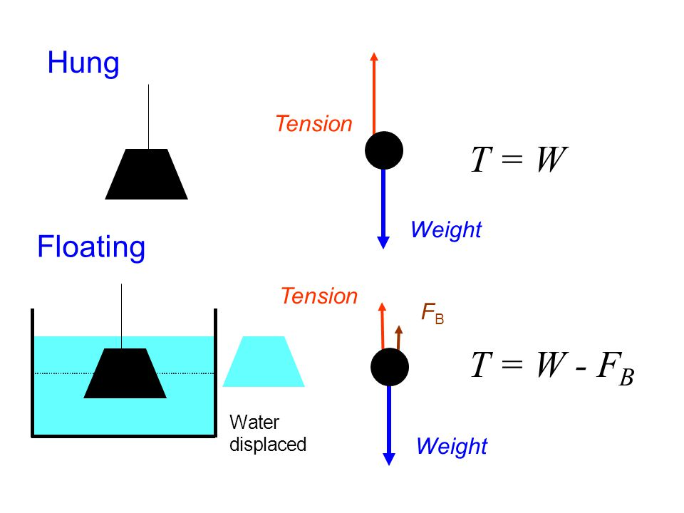 Water displaced Hung T = W Weight Tension Weight FBFB T = W - F B Floating Tension