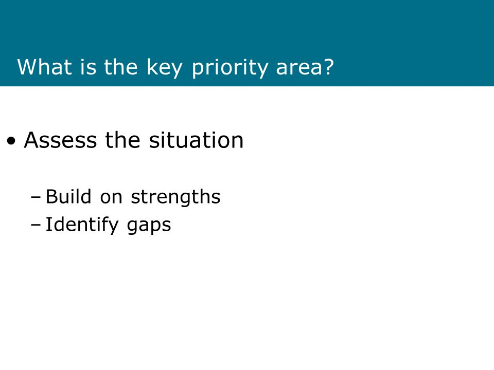 What is the key priority area? Assess the situation –Build on strengths –Identify gaps