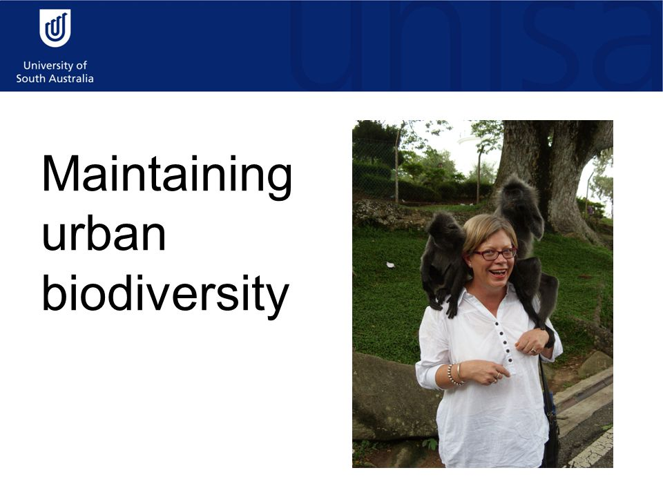 Maintaining urban biodiversity