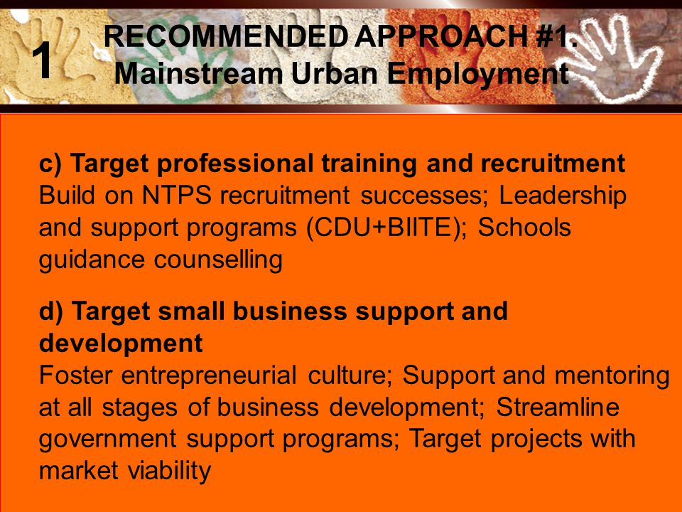 c) Target professional training and recruitment Build on NTPS recruitment successes; Leadership and support programs (CDU+BIITE); Schools guidance cou