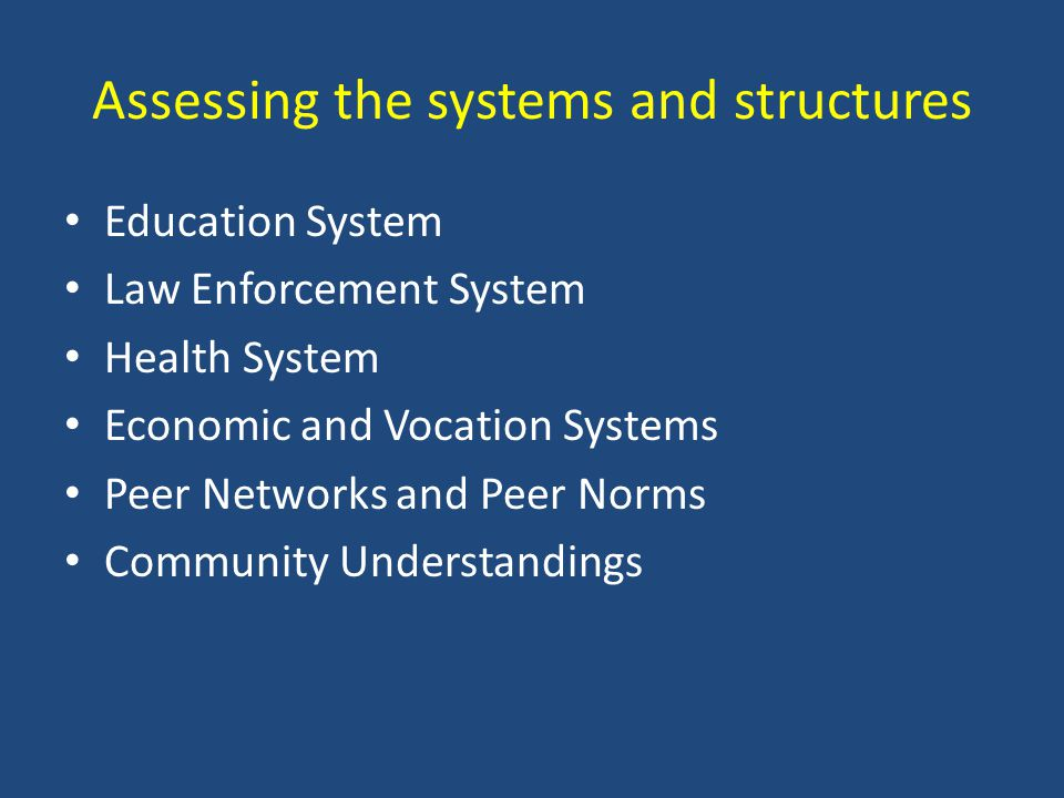 Assessing the systems and structures Education System Law Enforcement System Health System Economic and Vocation Systems Peer Networks and Peer Norms