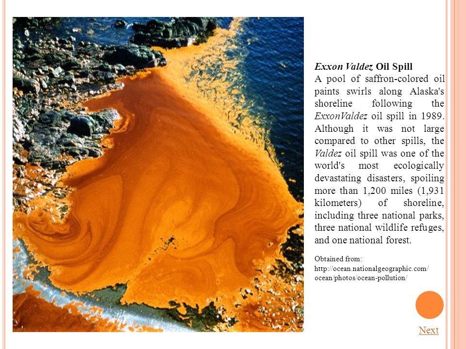 Exxon Valdez Oil Spill A pool of saffron-colored oil paints swirls along Alaska s shoreline following the ExxonValdez oil spill in 1989.