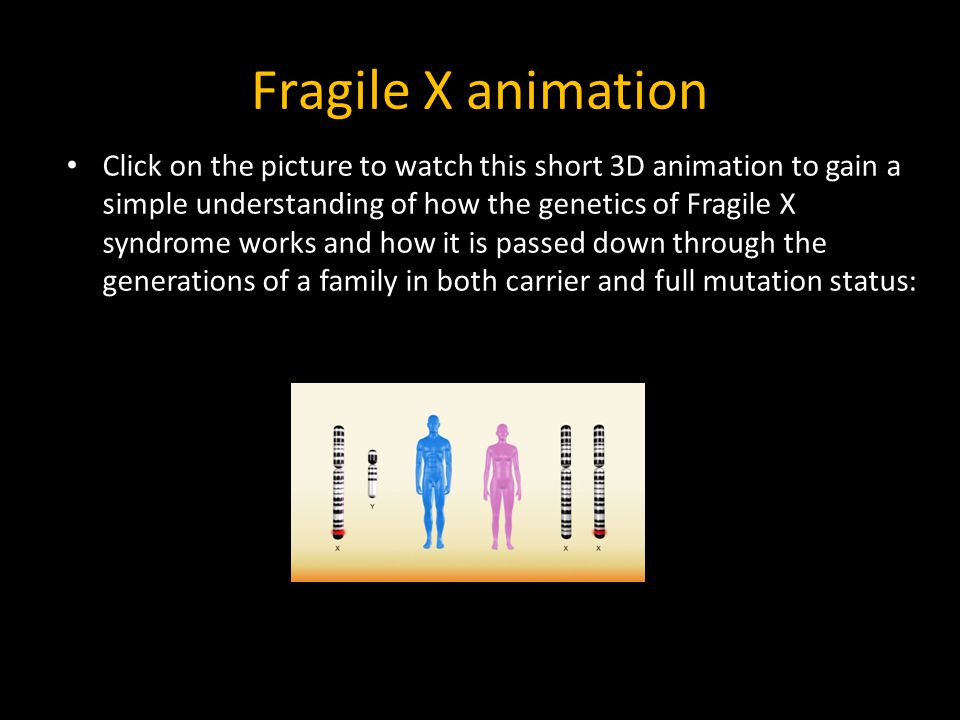 Fragile X animation Click on the picture to watch this short 3D animation to gain a simple understanding of how the genetics of Fragile X syndrome wor