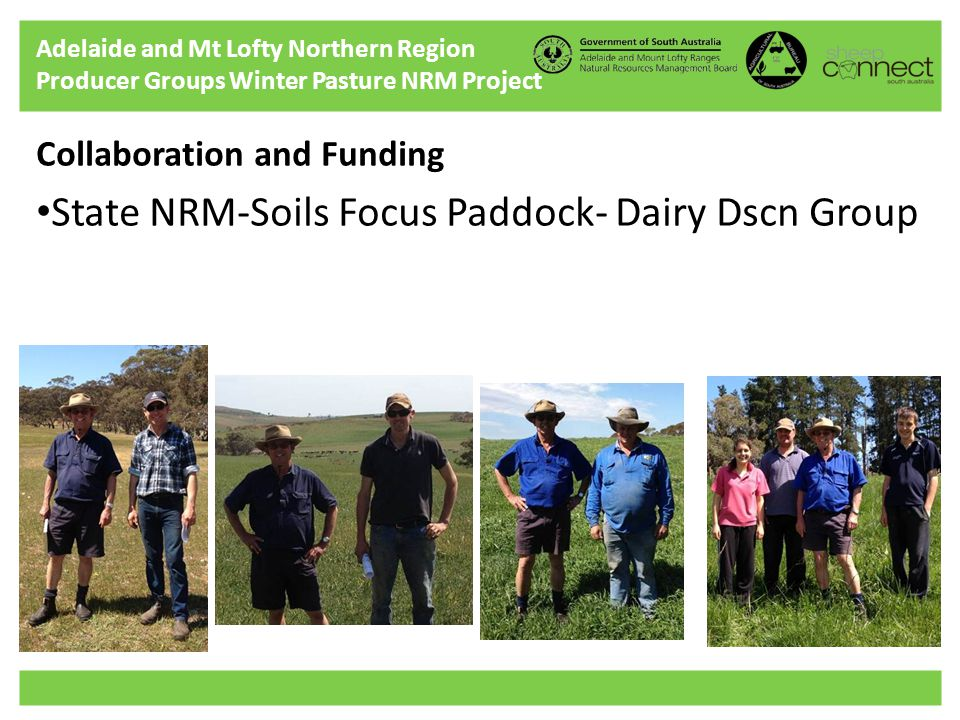 Adelaide and Mt Lofty Northern Region Producer Groups Winter Pasture NRM Project Collaboration and Funding State NRM-Soils Focus Paddock- Dairy Dscn Group