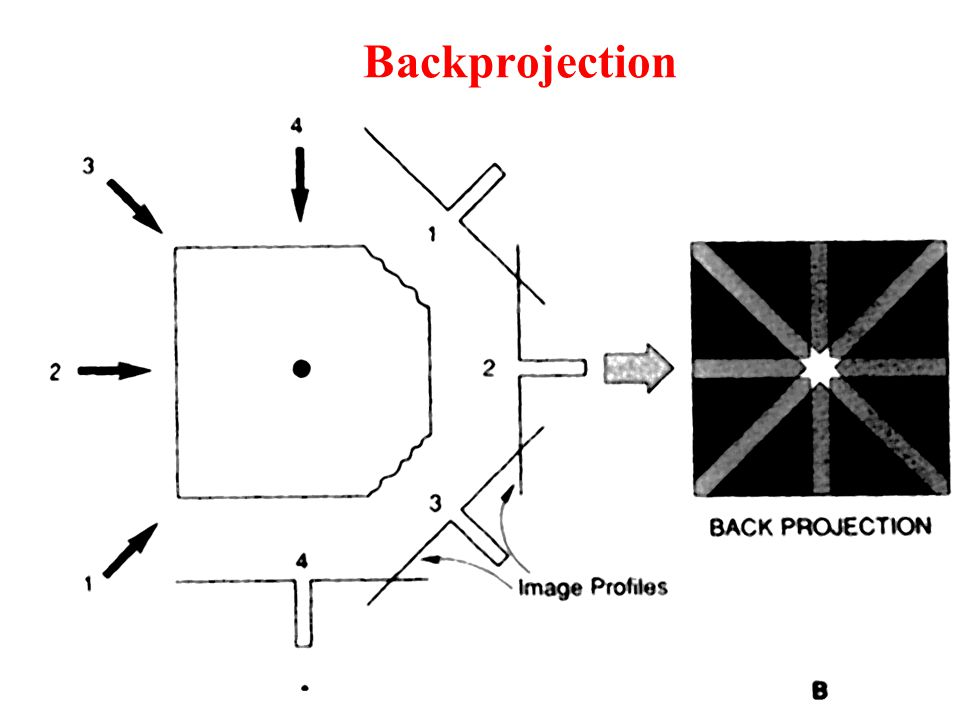 Backprojection The field of view is simulated as a 2-D array within the computer.