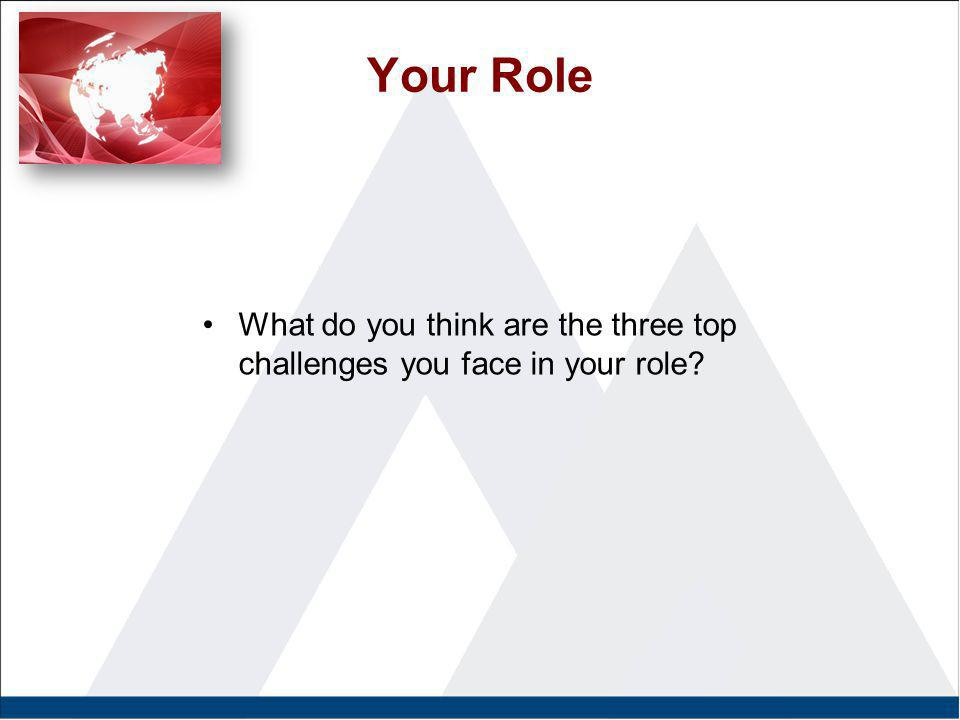 Your Role What do you think are the three top challenges you face in your role?