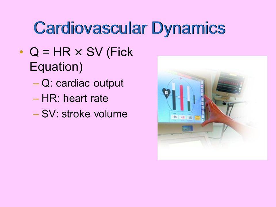 Cardiovascular Dynamics Q = HR × SV (Fick Equation) –Q: cardiac output –HR: heart rate –SV: stroke volume