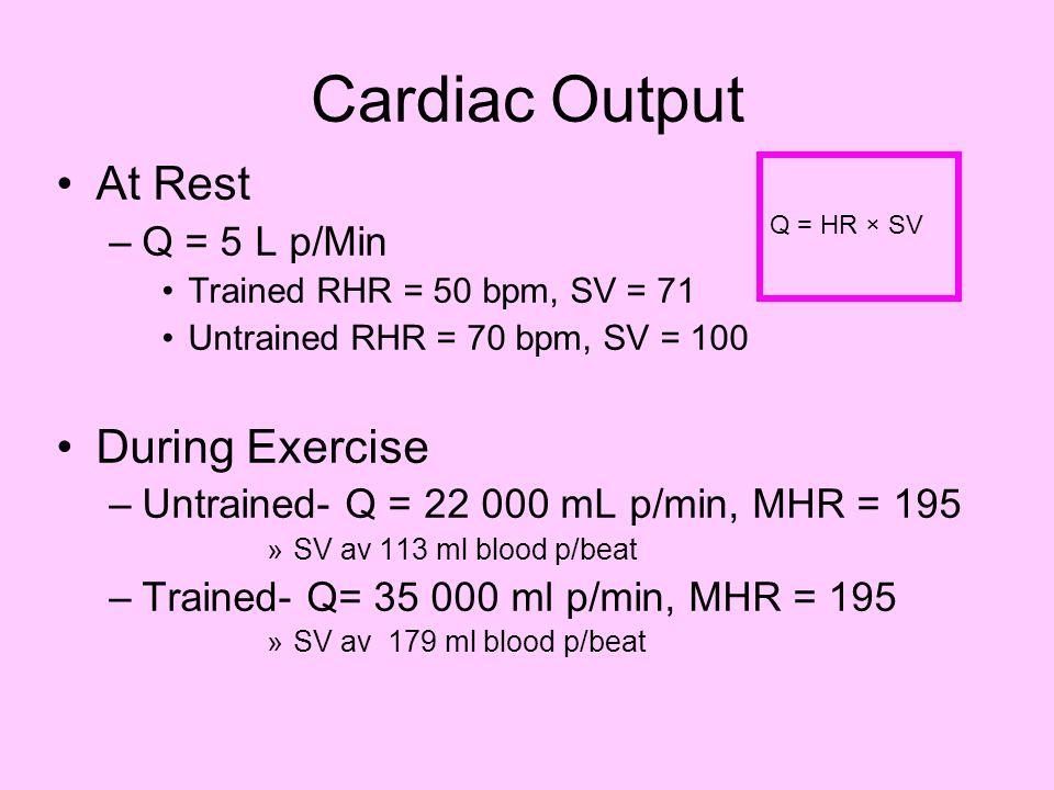 Cardiac Output At Rest –Q = 5 L p/Min Trained RHR = 50 bpm, SV = 71 Untrained RHR = 70 bpm, SV = 100 During Exercise –Untrained- Q = 22 000 mL p/min,