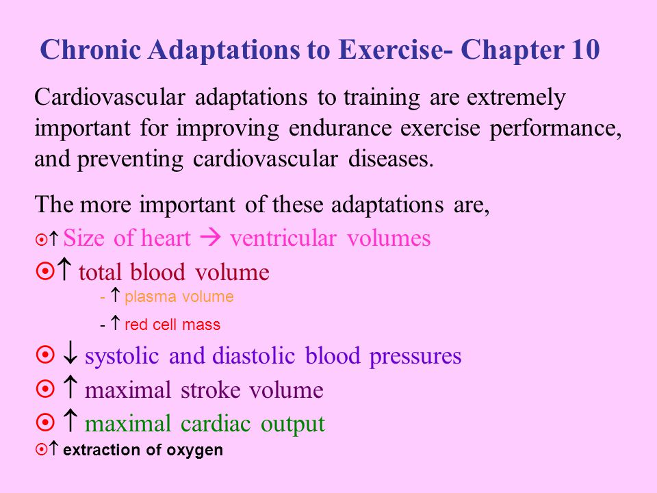 Chronic Adaptations to Exercise- Chapter 10 Cardiovascular adaptations to training are extremely important for improving endurance exercise performanc