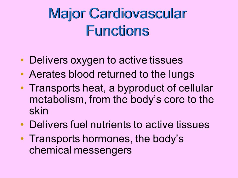 Major Cardiovascular Functions Delivers oxygen to active tissues Aerates blood returned to the lungs Transports heat, a byproduct of cellular metaboli