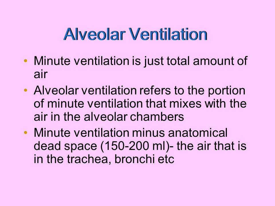Alveolar Ventilation Minute ventilation is just total amount of air Alveolar ventilation refers to the portion of minute ventilation that mixes with t