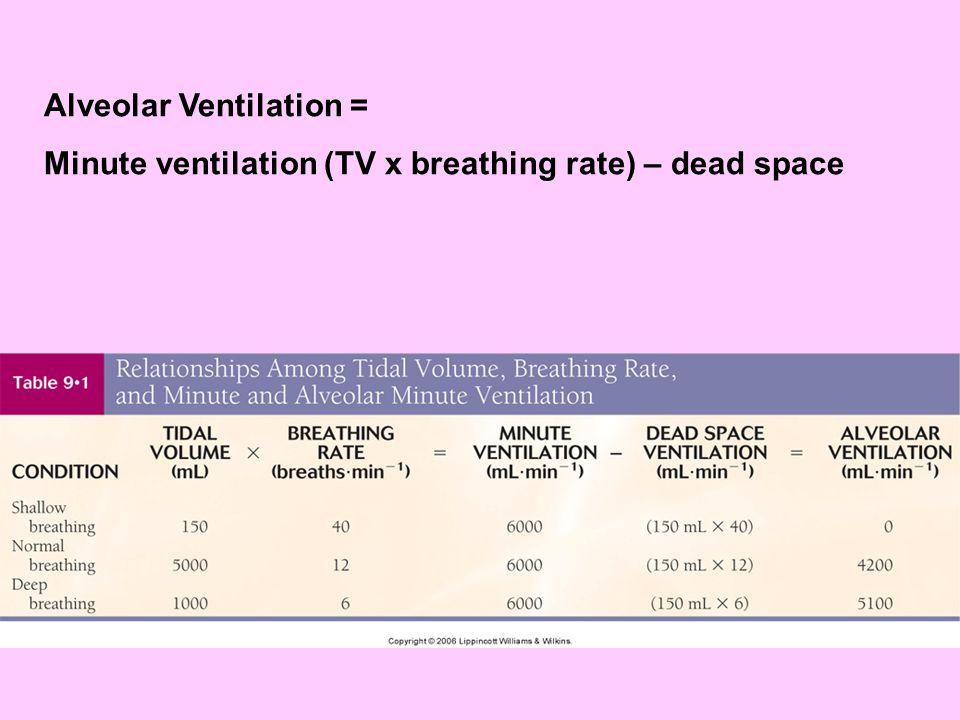 Alveolar Ventilation = Minute ventilation (TV x breathing rate) – dead space