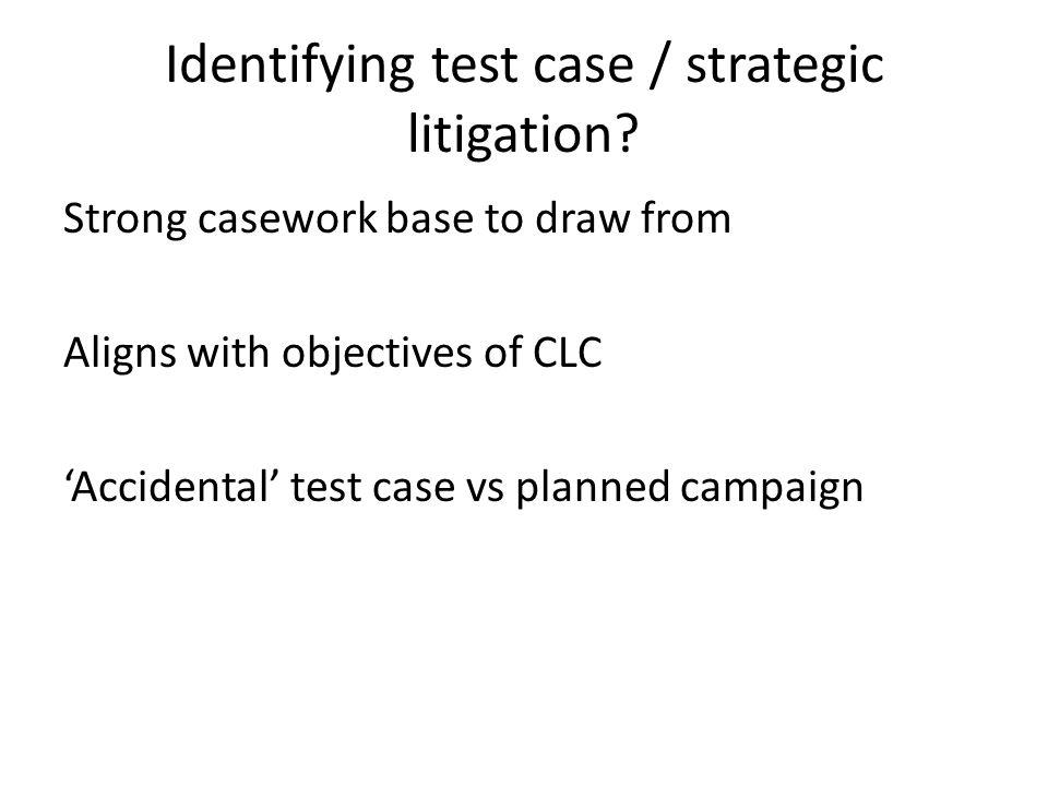 Identifying test case / strategic litigation.