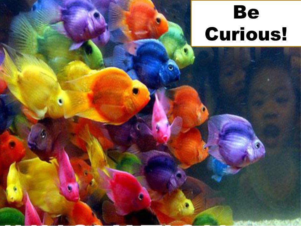 @ V ictoria U niversity SAUG Melbourne 2011 Be Curious!