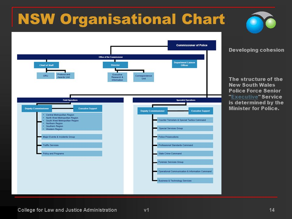 College for Law and Justice Administration v1 14 NSW Organisational Chart Developing cohesion The structure of the New South Wales Police Force Senior Executive Service is determined by the Minister for Police.Executive