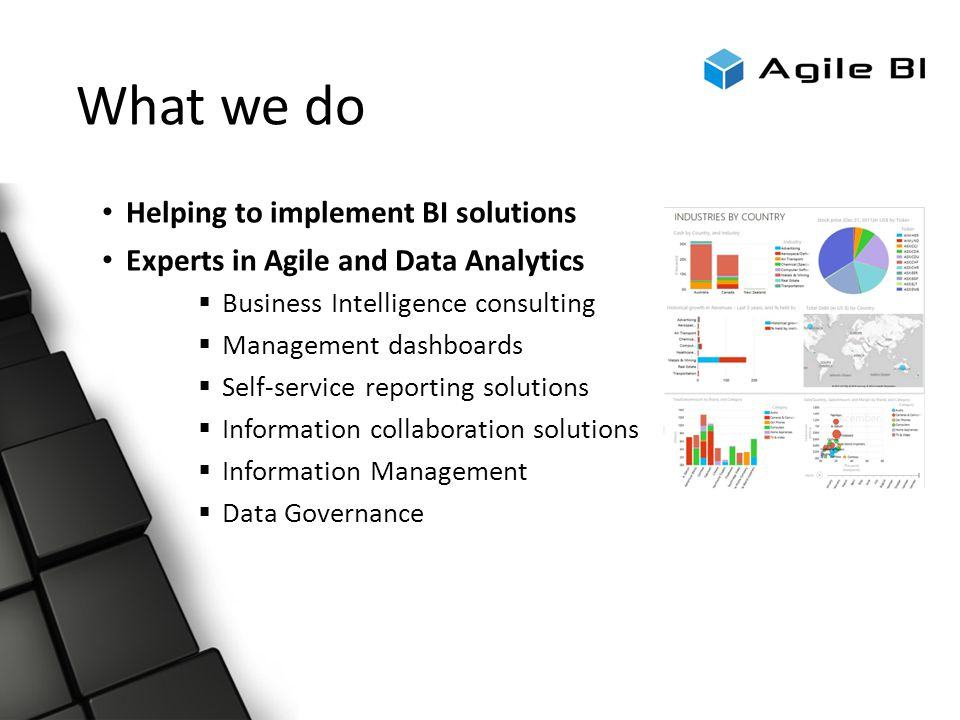 What we do Helping to implement BI solutions Experts in Agile and Data Analytics  Business Intelligence consulting  Management dashboards  Self-service reporting solutions  Information collaboration solutions  Information Management  Data Governance
