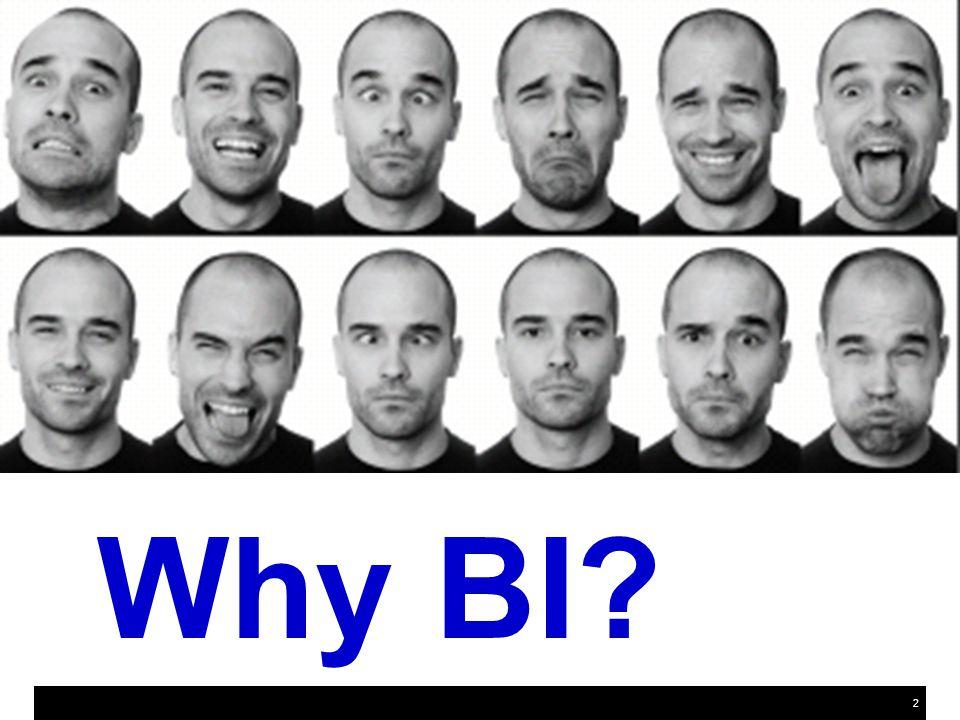 2 Why BI