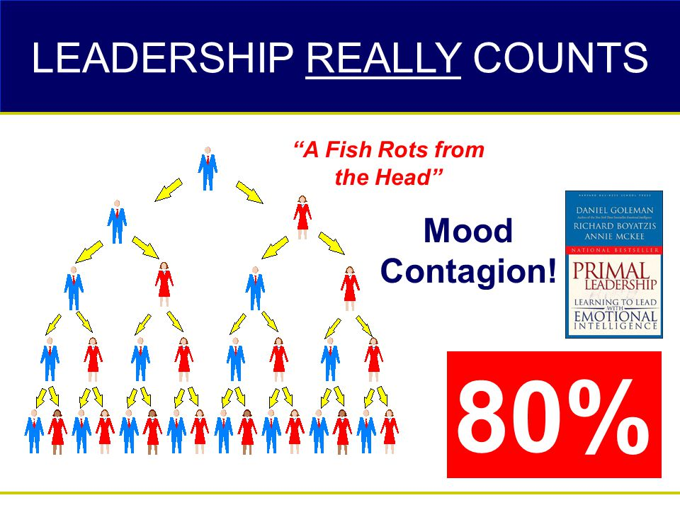 """Mood Contagion! """"A Fish Rots from the Head"""" 80% LEADERSHIP REALLY COUNTS"""
