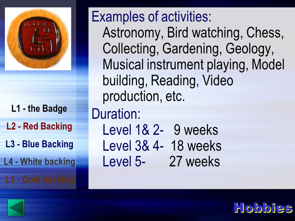 L1 - the Badge L2 - Red Backing L3 - Blue Backing L4 - White backing L5 - Gold backing Examples of activities: Astronomy, Bird watching, Chess, Collecting, Gardening, Geology, Musical instrument playing, Model building, Reading, Video production, etc.